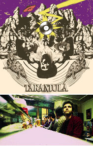 Programa 122 | Tarántula